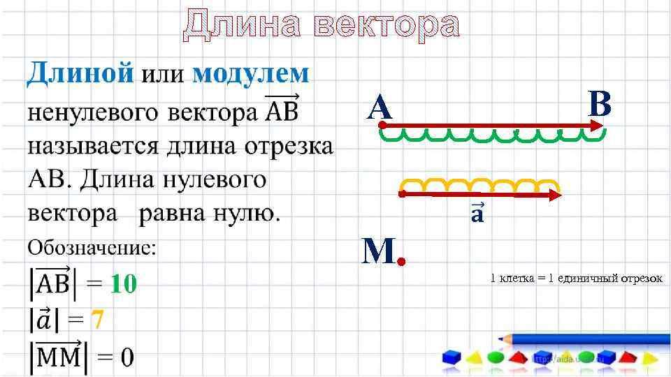 В А М 1 клетка = 1 единичный отрезок
