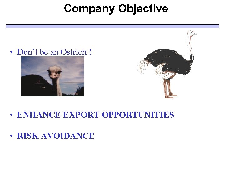 Company Objective • Don't be an Ostrich ! • ENHANCE EXPORT OPPORTUNITIES • RISK