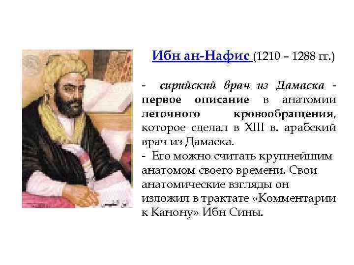 Ибн ан-Нафис (1210 – 1288 гг. ) - сирийский врач из Дамаска первое описание