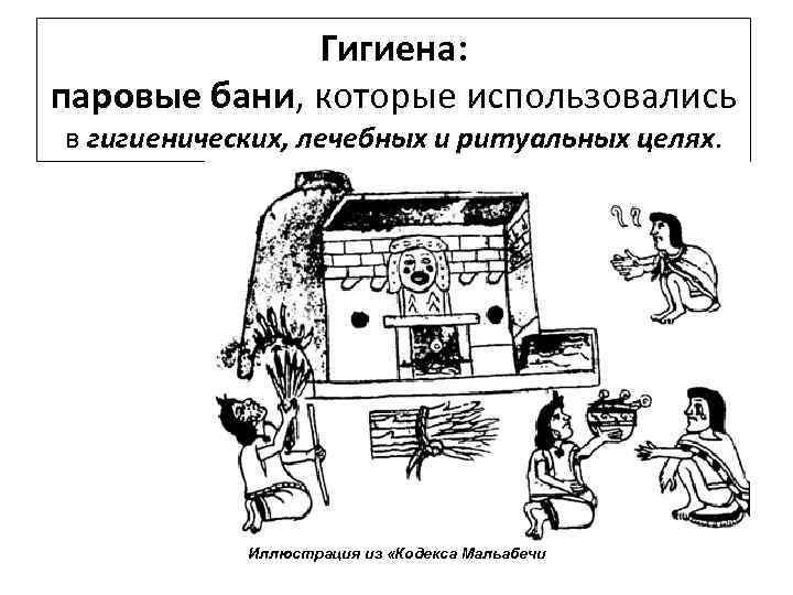 Гигиена: паровые бани, которые использовались в гигиенических, лечебных и ритуальных целях. Иллюстрация из «Кодекса