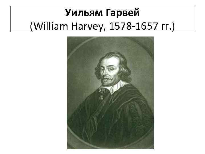 Уильям Гарвей (William Harvey, 1578 -1657 гг. )