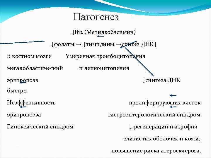 Патогенез ↓В 12 (Метилкобаламин) ↓фолаты → ↓тимидины →синтез ДНК↓ В костном мозге Умеренная тромбоцитопения
