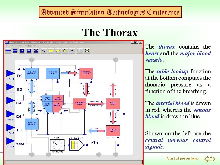 Advanced Simulation Technologies Conference Thorax The thorax contains the heart and the major blood
