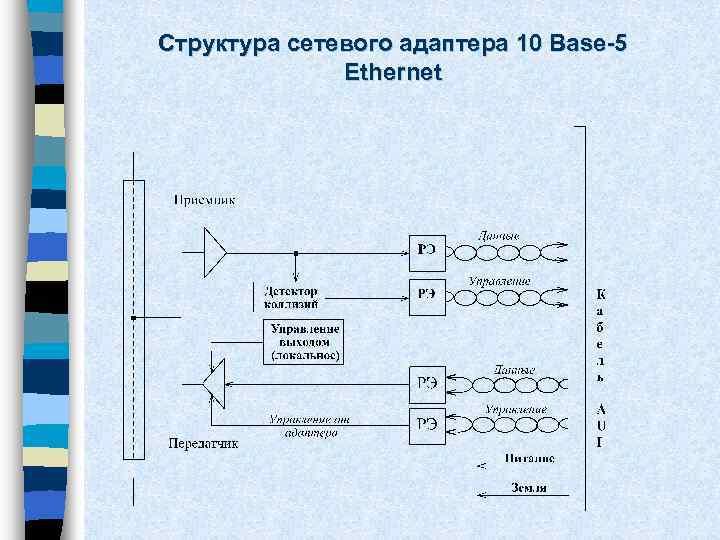 Структура сетевого адаптера 10 Base-5 Ethernet