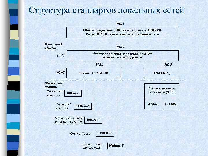 Структура стандартов локальных сетей