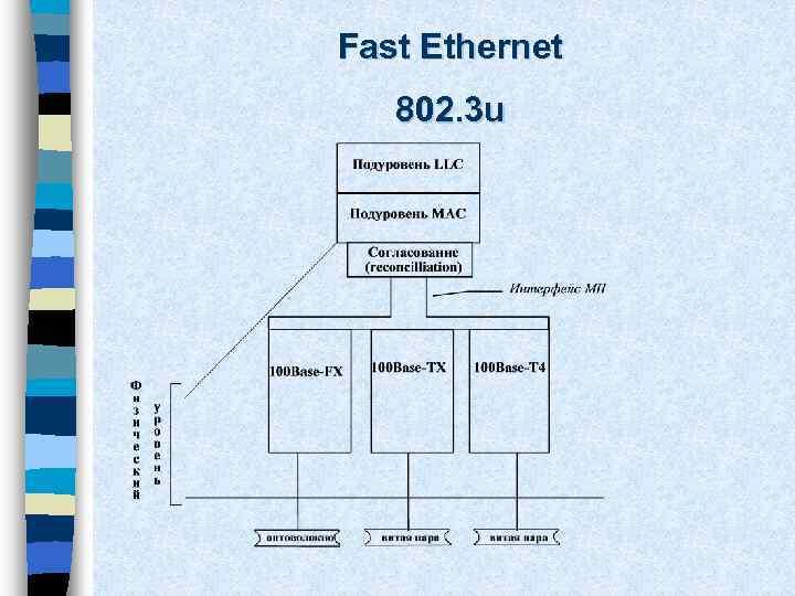 Fast Ethernet 802. 3 u