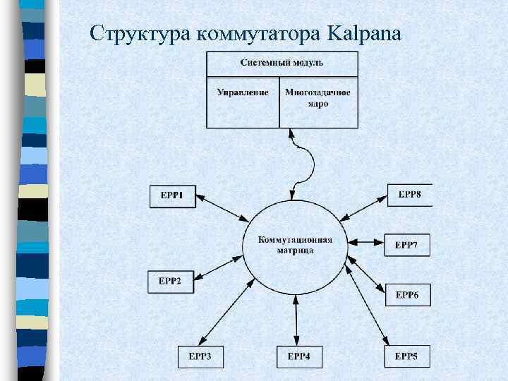 Структура коммутатора Kalpana