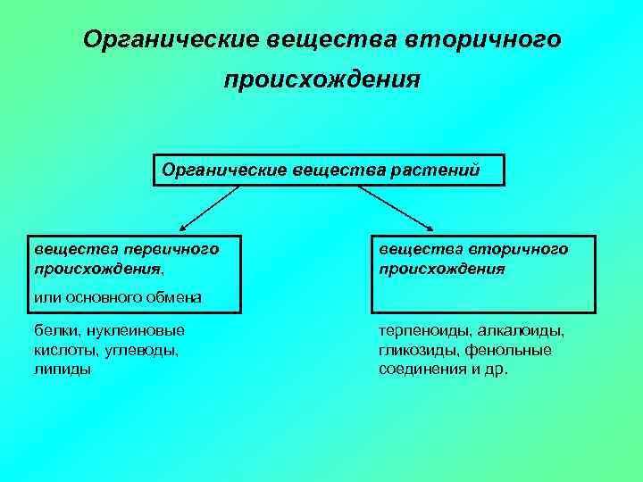Органические вещества вторичного происхождения Органические вещества растений вещества первичного происхождения, вещества вторичного происхождения или