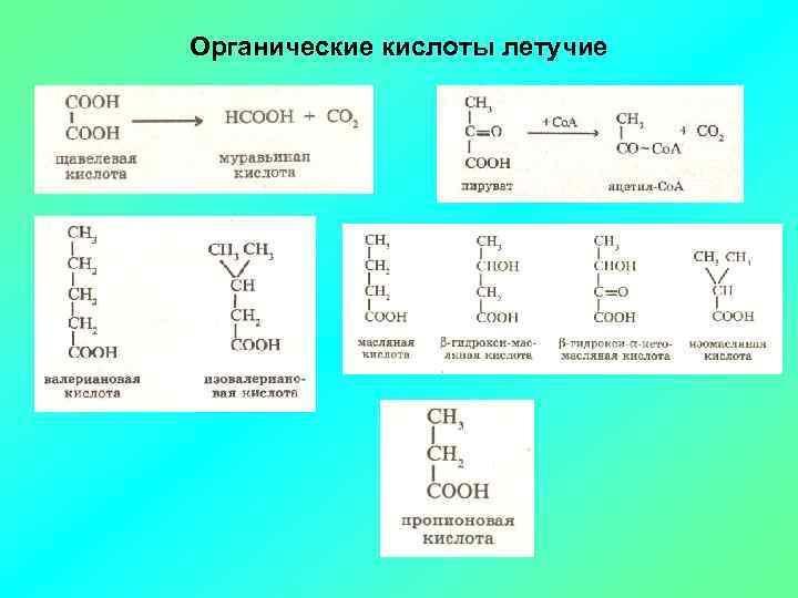 Органические кислоты летучие