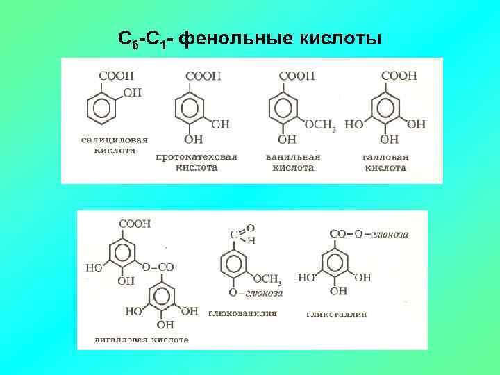 С 6 -С 1 - фенольные кислоты