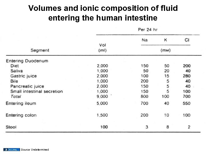 Volumes and ionic composition of fluid entering the human intestine Source Undetermined