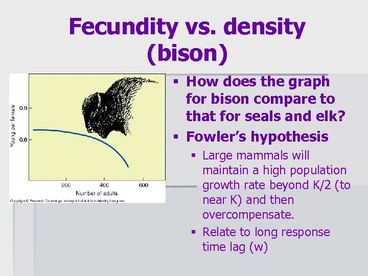 Fecundity vs. density (bison) § How does the graph for bison compare to that
