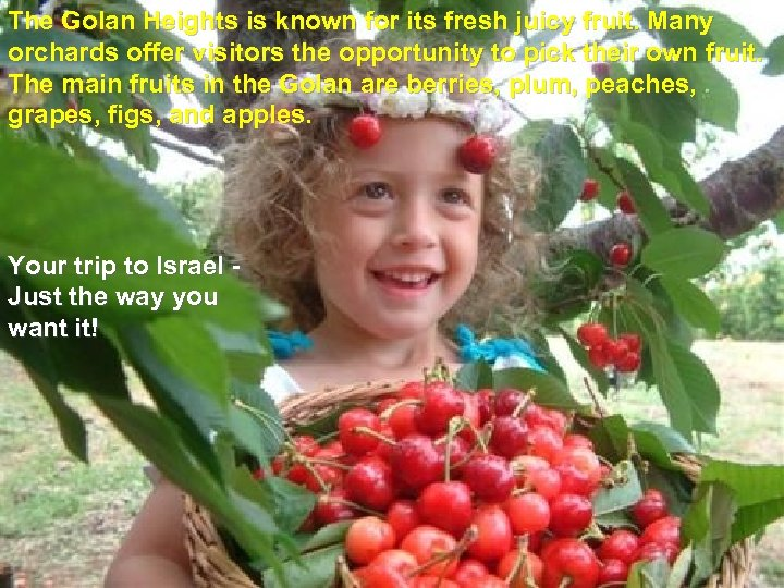The Golan Heights is known for its fresh juicy fruit. Many orchards offer visitors