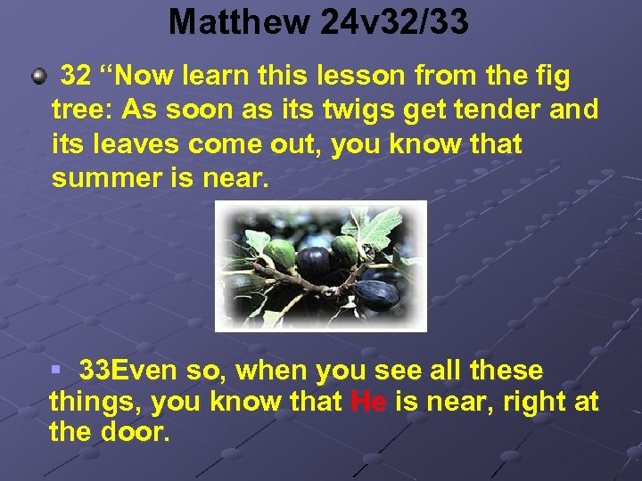 """Matthew 24 v 32/33 32 """"Now learn this lesson from the fig tree: As"""