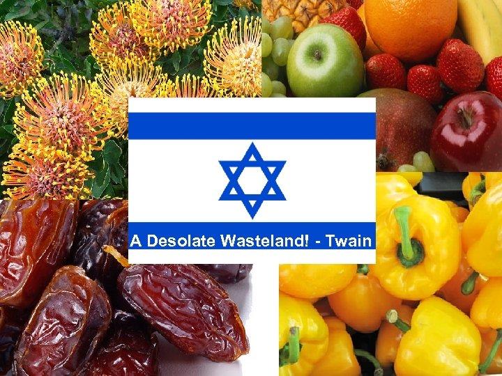 A Desolate Wasteland! - Twain