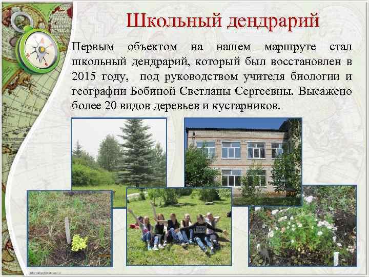 Школьный дендрарий Первым объектом на нашем маршруте стал школьный дендрарий, который был восстановлен в