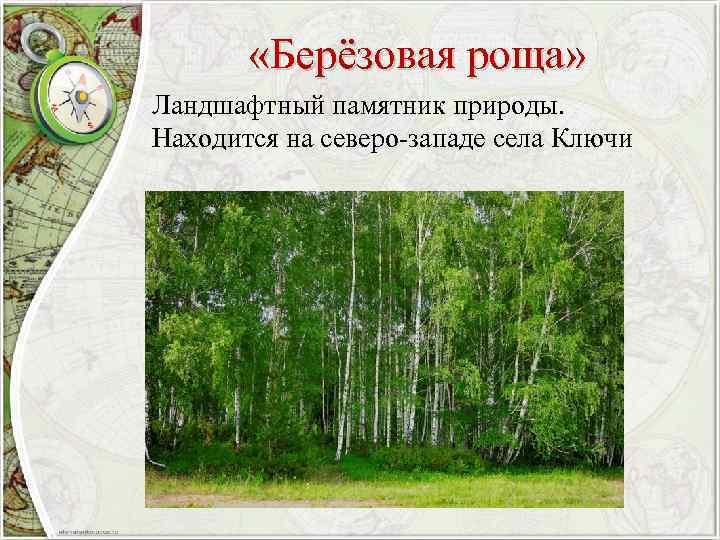 «Берёзовая роща» Ландшафтный памятник природы. Находится на северо-западе села Ключи