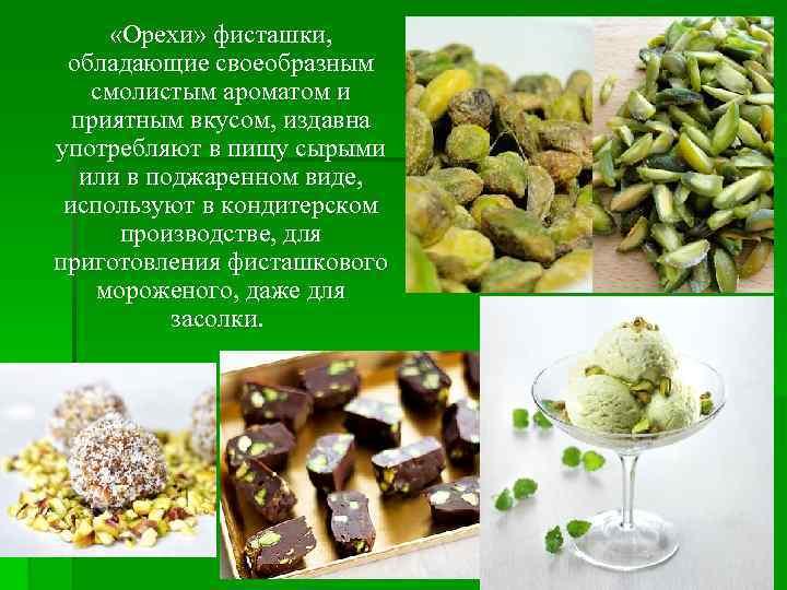 «Орехи» фисташки, обладающие своеобразным смолистым ароматом и приятным вкусом, издавна употребляют в пищу