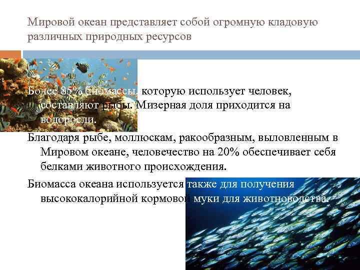 Мировой океан представляет собой огромную кладовую различных природных ресурсов Более 85% биомассы, которую использует