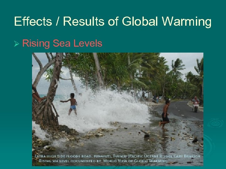Effects / Results of Global Warming Ø Rising Sea Levels