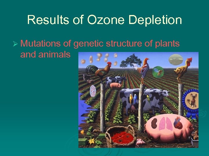 Results of Ozone Depletion Ø Mutations of genetic structure of plants and animals