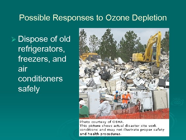 Possible Responses to Ozone Depletion Ø Dispose of old refrigerators, freezers, and air conditioners