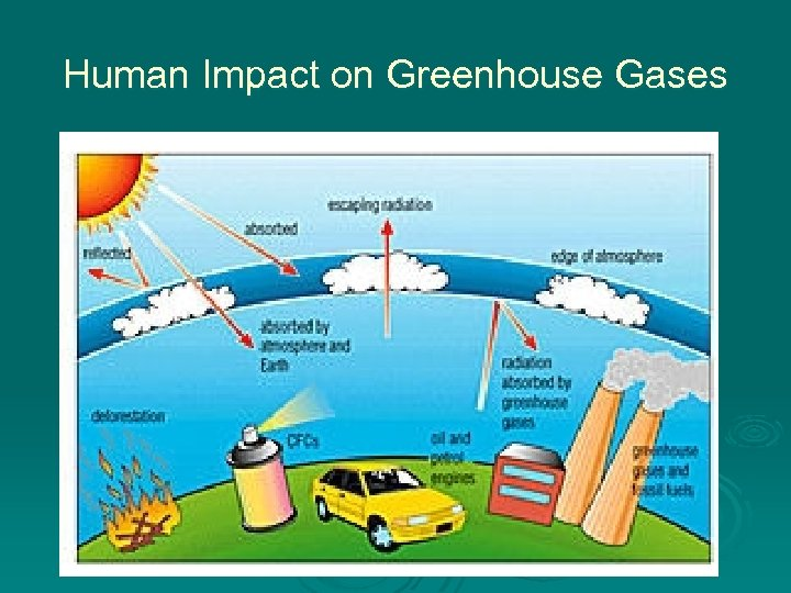 Human Impact on Greenhouse Gases
