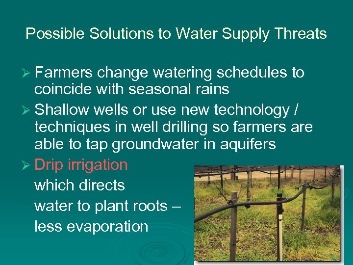 Possible Solutions to Water Supply Threats Ø Farmers change watering schedules to coincide with