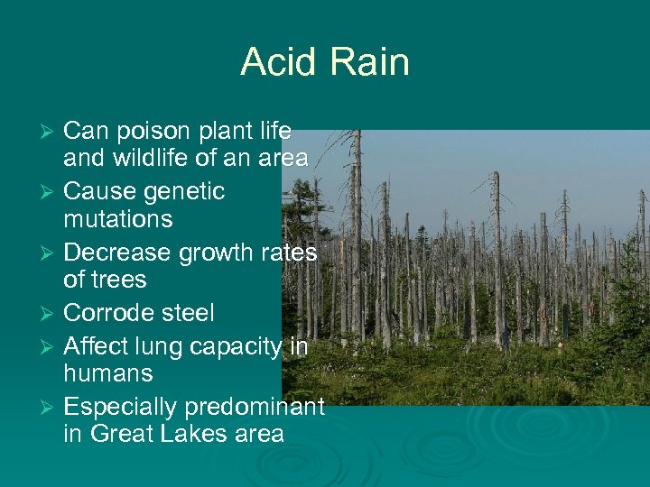 Acid Rain Can poison plant life and wildlife of an area Ø Cause genetic