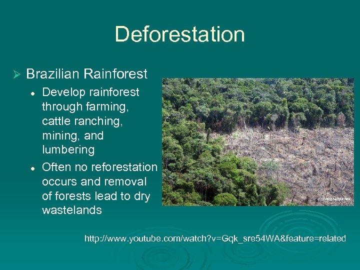 Deforestation Ø Brazilian Rainforest l l Develop rainforest through farming, cattle ranching, mining, and