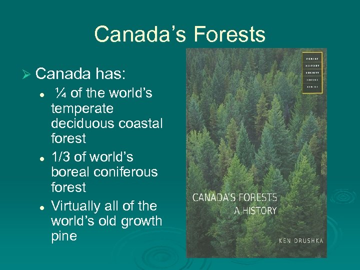 Canada's Forests Ø Canada has: l l l ¼ of the world's temperate deciduous