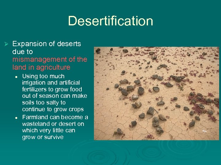 Desertification Ø Expansion of deserts due to mismanagement of the land in agriculture l