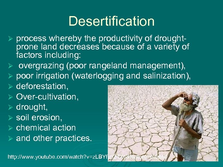 Desertification process whereby the productivity of droughtprone land decreases because of a variety of