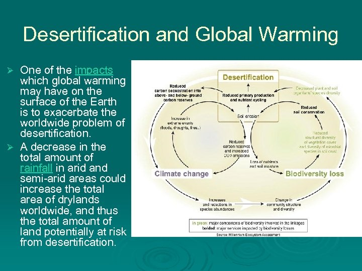Desertification and Global Warming One of the impacts which global warming may have on