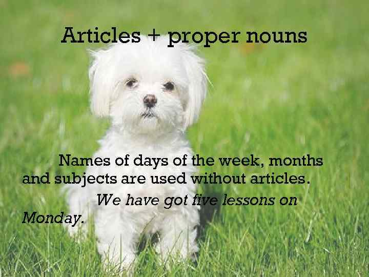 Articles + proper nouns Names of days of the week, months and subjects are