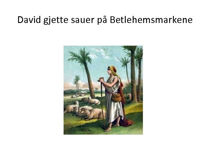 David gjette sauer på Betlehemsmarkene
