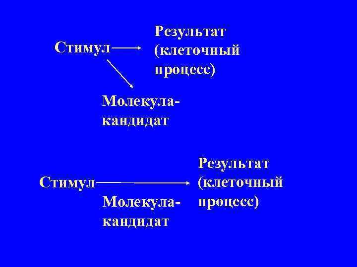 Стимул Результат (клеточный процесс) Молекулакандидат Стимул Молекулакандидат Результат (клеточный процесс)