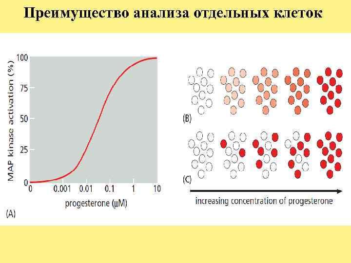 Преимущество анализа отдельных клеток