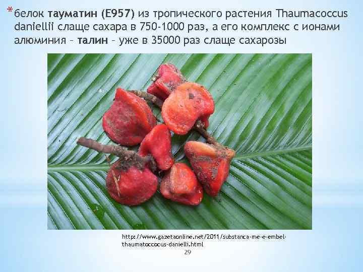 *белок тауматин (E 957) из тропического растения Thaumacoccus daniellii слаще сахара в 750 -1000