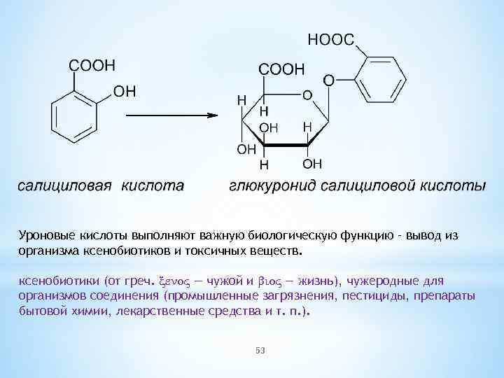 Уроновые кислоты выполняют важную биологическую функцию – вывод из организма ксенобиотиков и токсичных веществ.