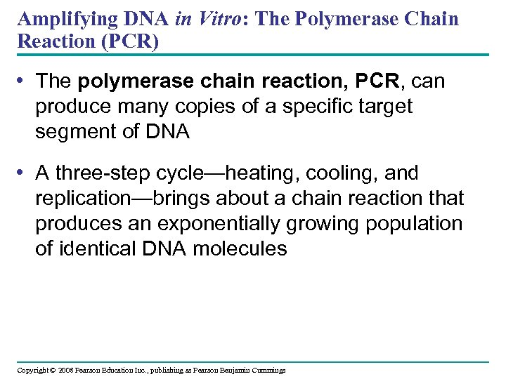 Amplifying DNA in Vitro: The Polymerase Chain Reaction (PCR) • The polymerase chain reaction,