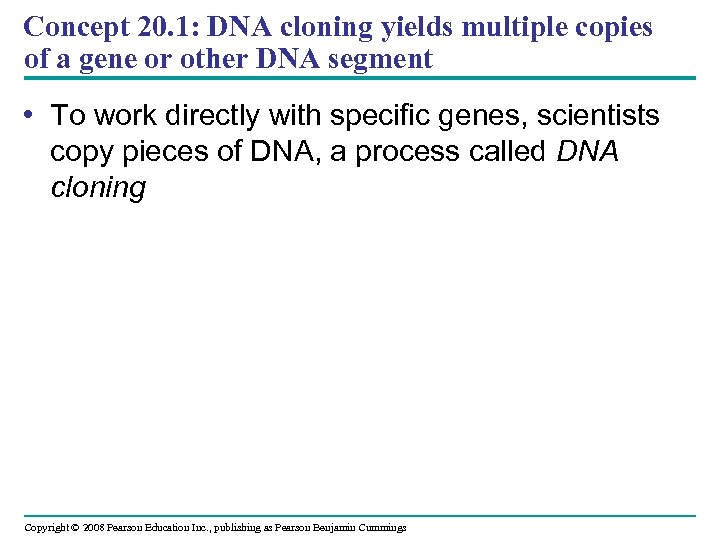 Concept 20. 1: DNA cloning yields multiple copies of a gene or other DNA