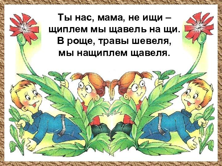 Ты нас, мама, не ищи – щиплем мы щавель на щи. В роще, травы
