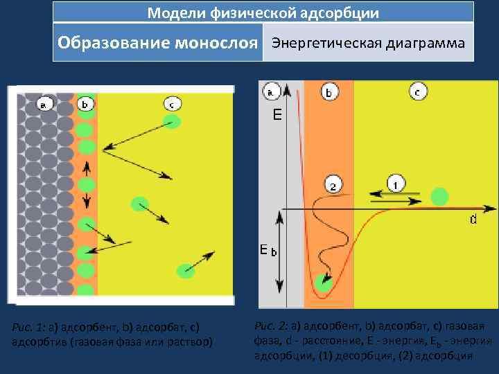 Модели физической адсорбции Образование монослоя Энергетическая диаграмма Рис. 1: a) адсорбент, b) адсорбат, c)