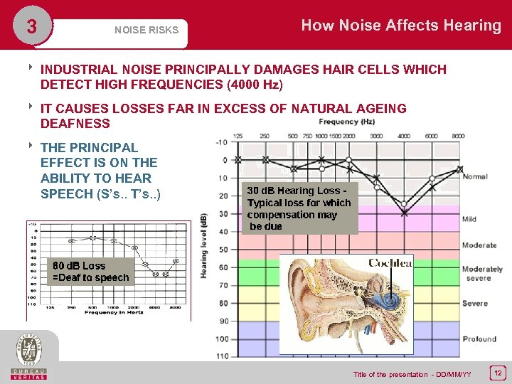 3 NOISE RISKS How Noise Affects Hearing 8 INDUSTRIAL NOISE PRINCIPALLY DAMAGES HAIR CELLS