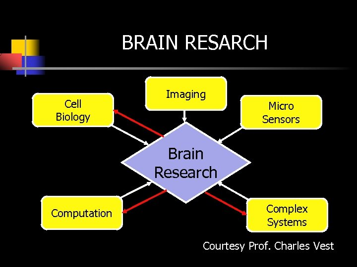 BRAIN RESARCH Cell Biology Imaging Micro Sensors Brain Research Computation Complex Systems Courtesy Prof.