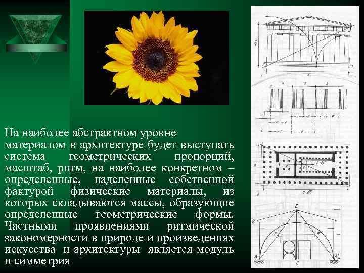 На наиболее абстрактном уровне материалом в архитектуре будет выступать система геометрических пропорций, масштаб, ритм,