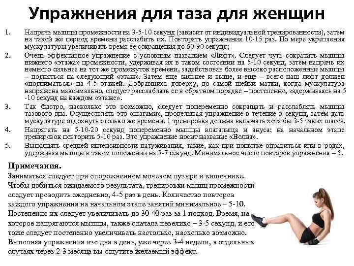 Упражнения для таза для женщин 1. 2. 3. 4. 5. Напрячь мышцы промежности на