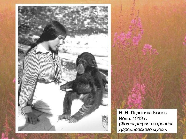 Н. Н. Ладыгина-Котс с Иони. 1913 г. (Фотография из фондов Дарвиновского музея)