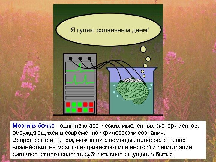 Мозги в бочке - один из классических мысленных экспериментов, обсуждающихся в современной философии сознания.